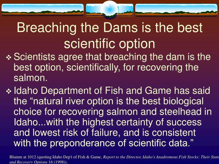 Breaching the Dams is the best scientific option