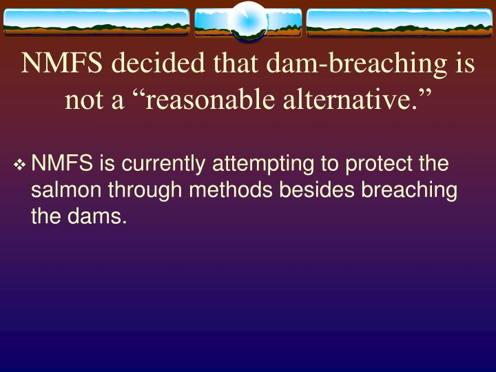 "NMFS decided that dam-breaching is not a ""reasonable alternative."""