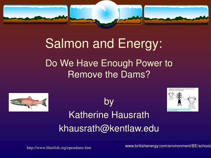 Salmon and energy