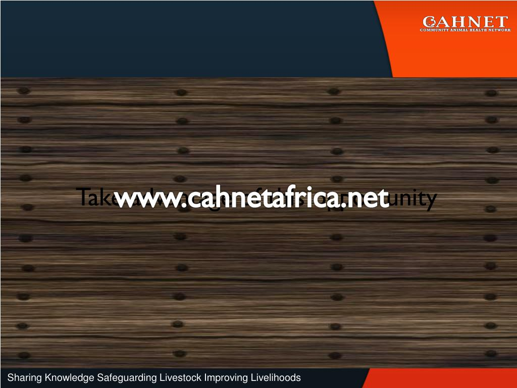 www.cahnetafrica.net