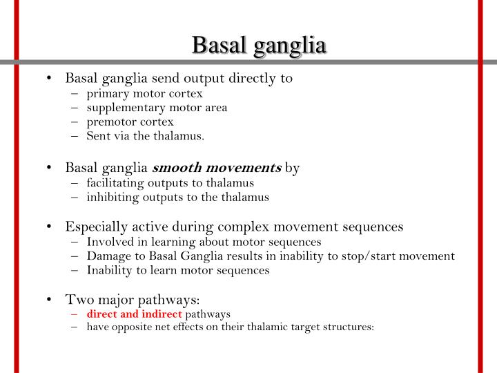 Basal ganglia send output directly to