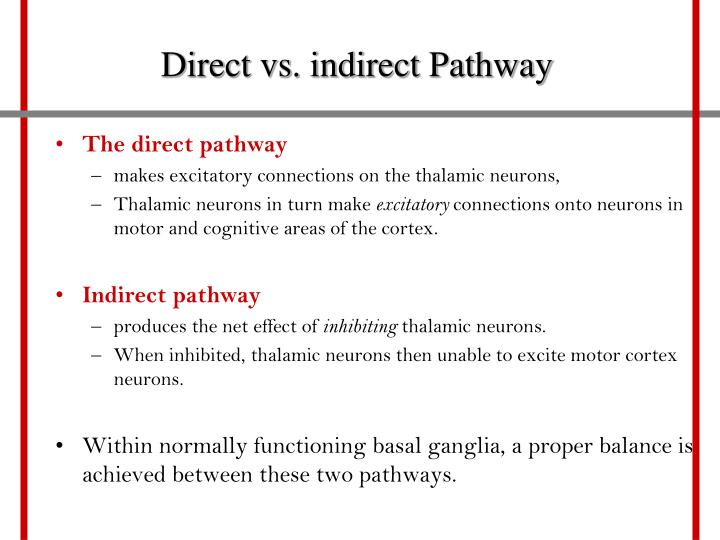 Direct vs. indirect Pathway