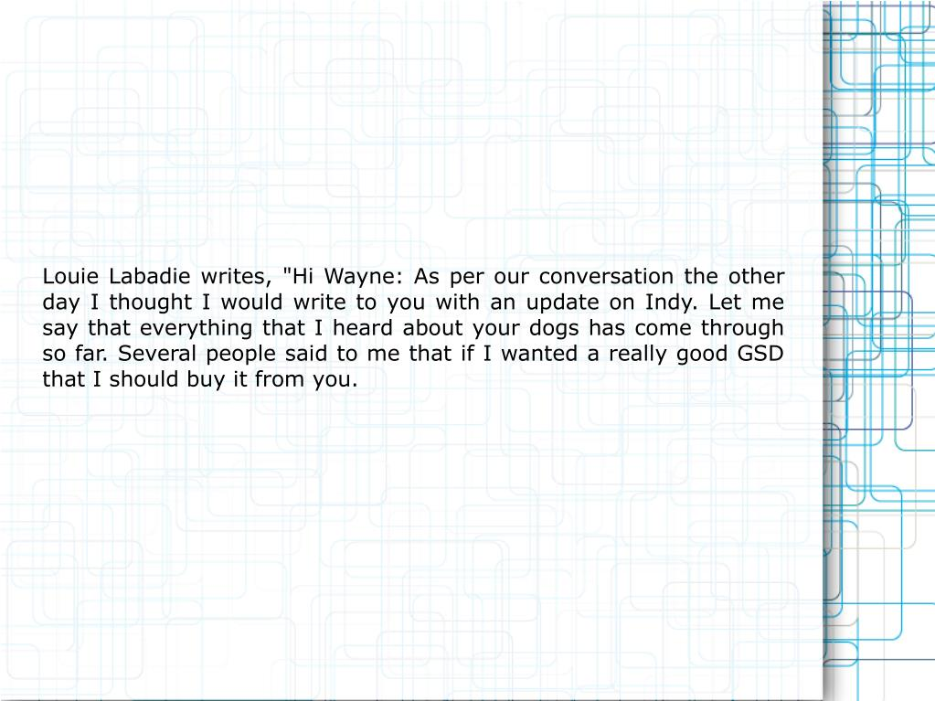 "Louie Labadie writes, ""Hi Wayne: As per our conversation the other day I thought I would write to you with an update on Indy. Let me say that everything that I heard about your dogs has come through so far. Several people said to me that if I wanted a really good GSD that I should buy it from you."