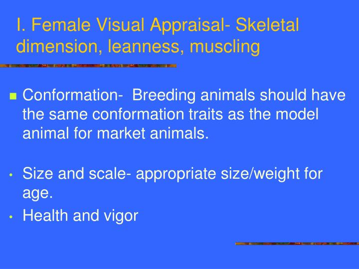 I. Female Visual Appraisal- Skeletal dimension, leanness, muscling
