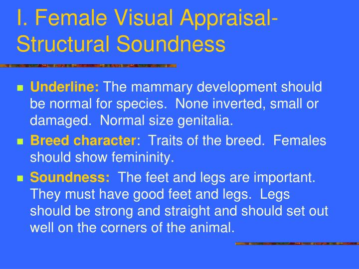 I. Female Visual Appraisal-Structural Soundness