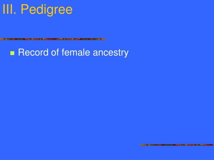 III. Pedigree