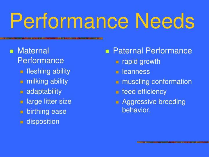 Maternal Performance