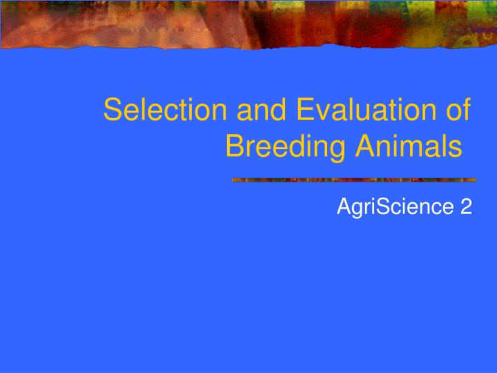 Selection and evaluation of breeding animals