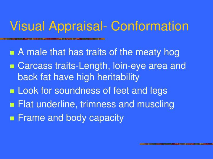Visual Appraisal- Conformation