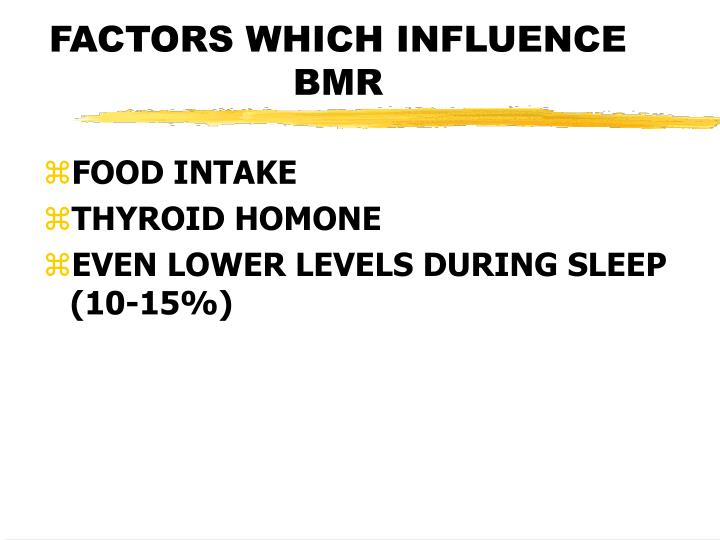 FACTORS WHICH INFLUENCE BMR