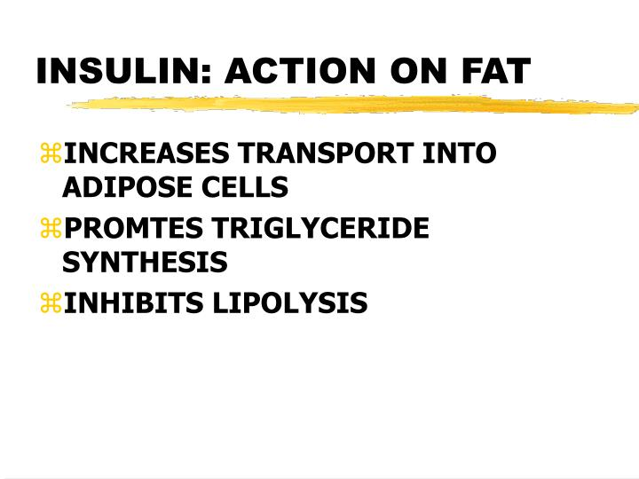 INSULIN: ACTION ON FAT