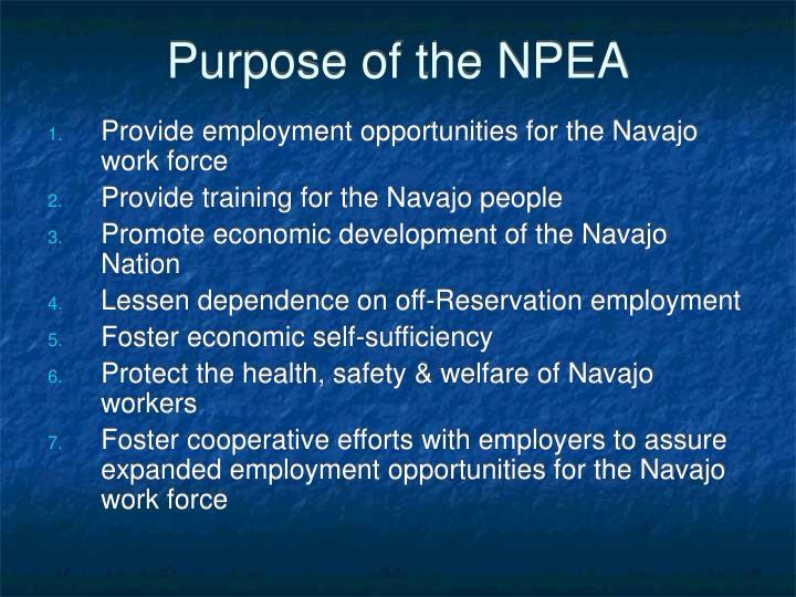 Purpose of the NPEA