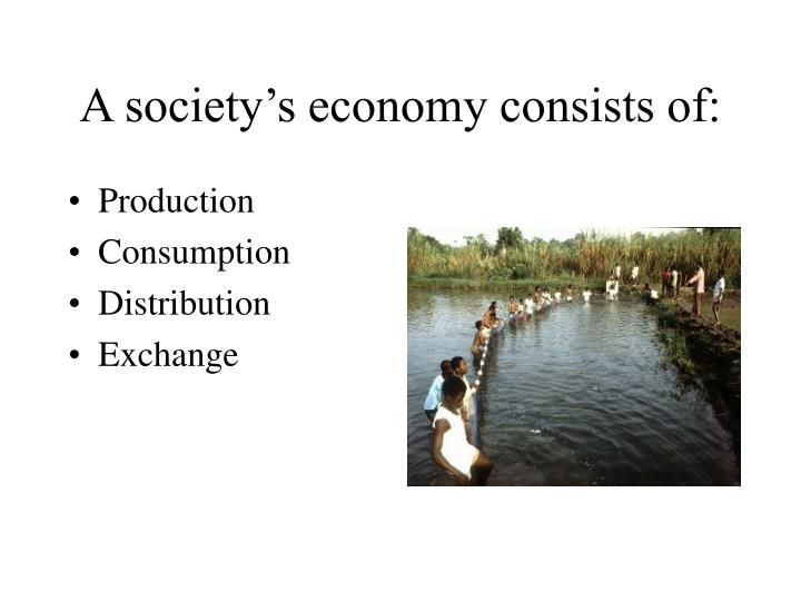 A society s economy consists of