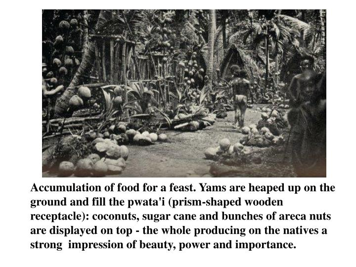 Accumulation of food for a feast. Yams are heaped up on the ground and fill the pwata'i (prism-shaped wooden receptacle): coconuts, sugar cane and bunches of areca nuts are displayed on top - the whole producing on the natives a strong