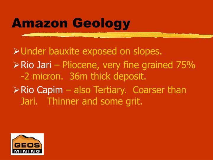Amazon Geology