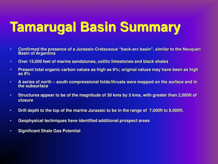 Tamarugal Basin Summary