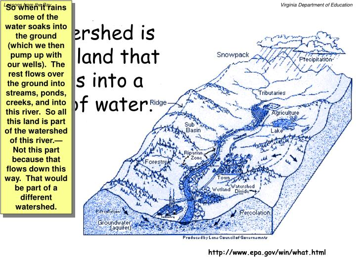 A watershed is all the land that drains into a body of water.