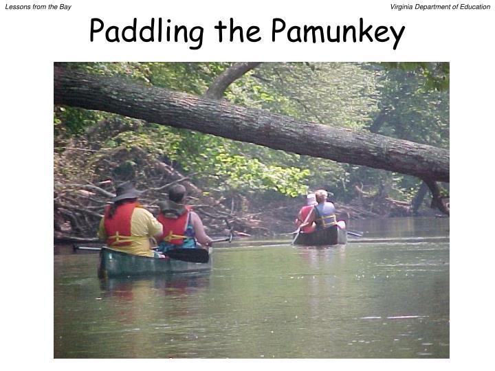 Paddling the Pamunkey
