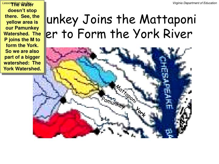Pamunkey Joins the Mattaponi River to Form the York River
