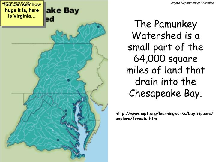 The Pamunkey Watershed is a small part of the 64,000 square miles of land that drain into the Chesapeake Bay.