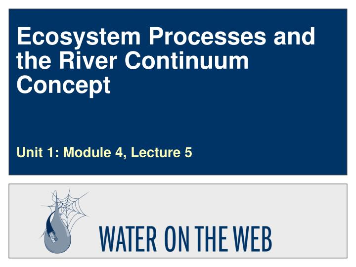 Ecosystem processes and the river continuum concept