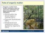 fate of organic matter