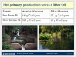 net primary production versus litter fall