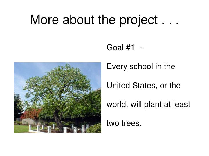 More about the project . . .