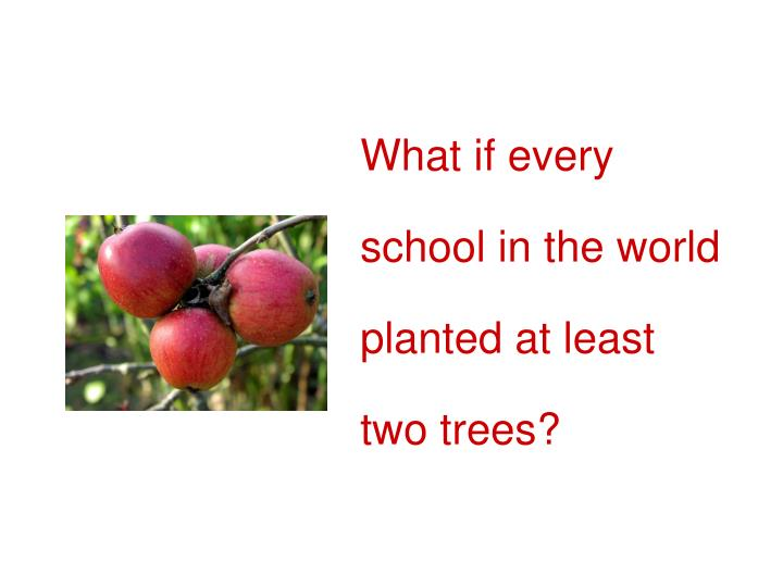 What if every school in the world planted at least two trees?