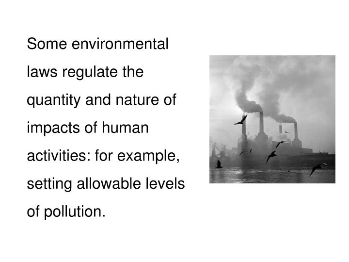 Some environmental laws regulate the quantity and nature of impacts of human activities: for example, setting allowable levels of pollution.
