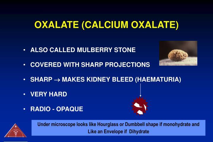 OXALATE (CALCIUM OXALATE)