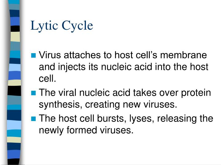 Lytic Cycle