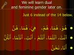 we will learn dual and feminine gender later on