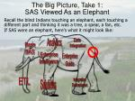 the big picture take 1 sas viewed as an elephant