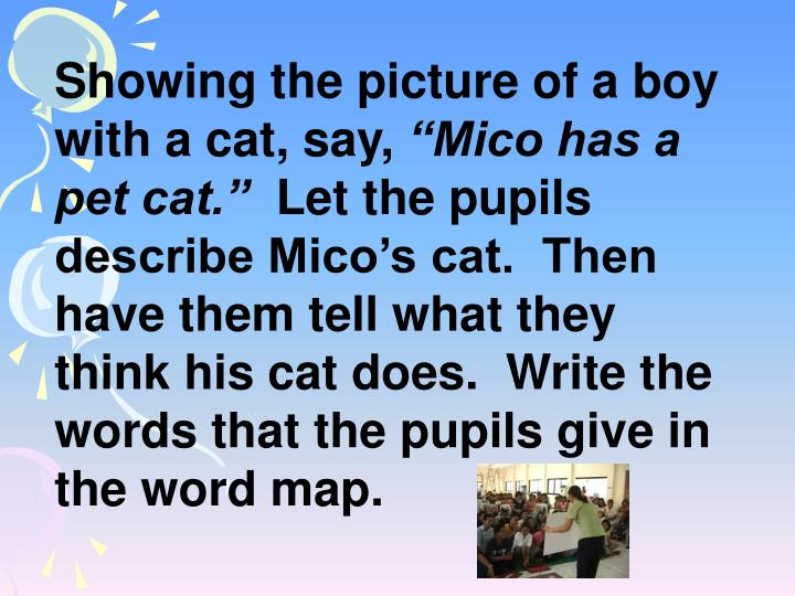 Showing the picture of a boy with a cat, say,