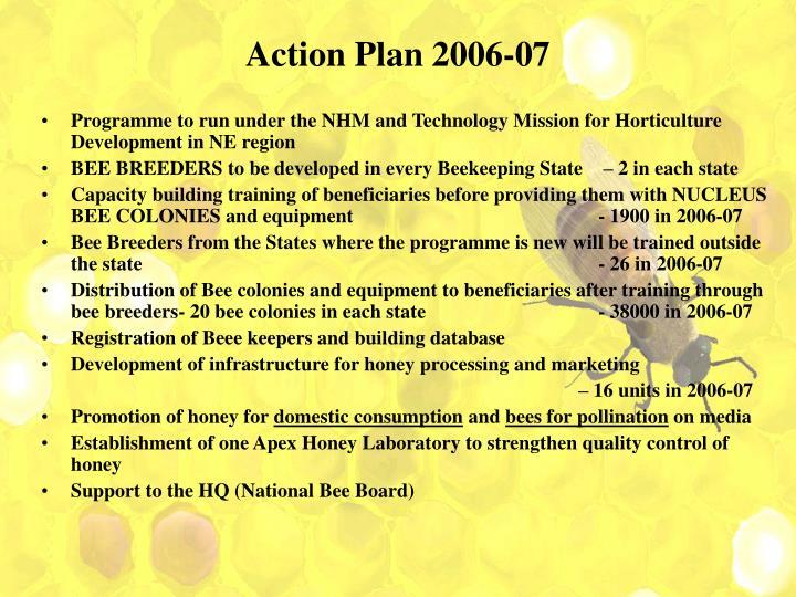 Action Plan 2006-07