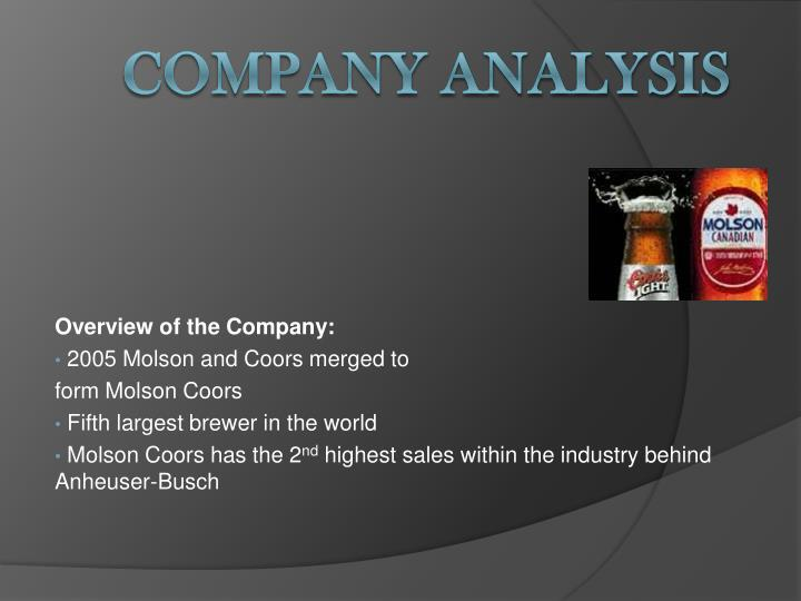 Overview of the Company: