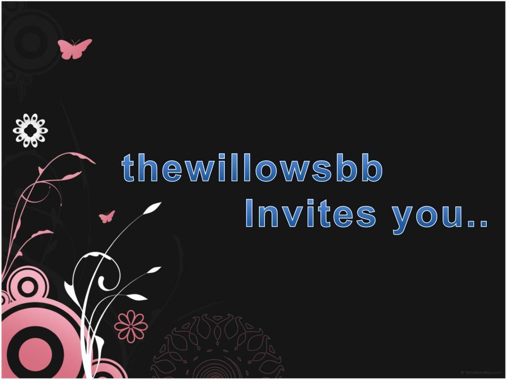 thewillowsbb