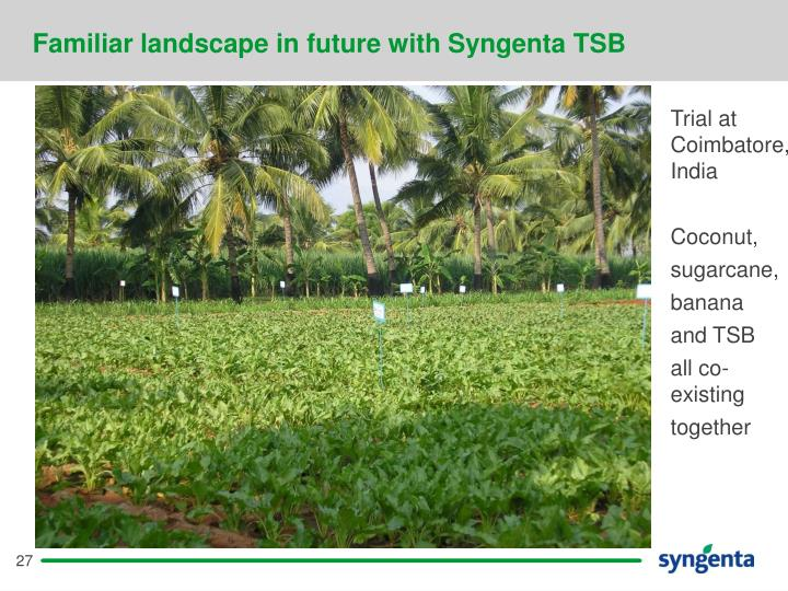 Familiar landscape in future with Syngenta TSB