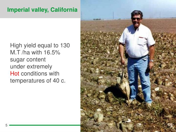 Imperial valley, California
