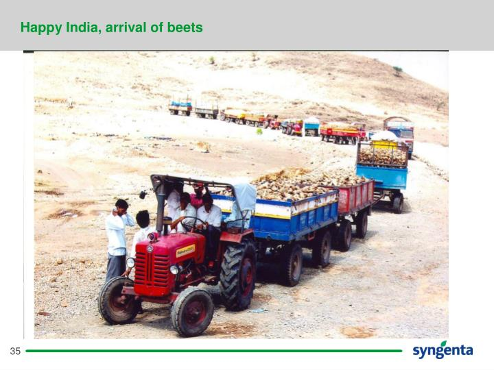 Happy India, arrival of beets