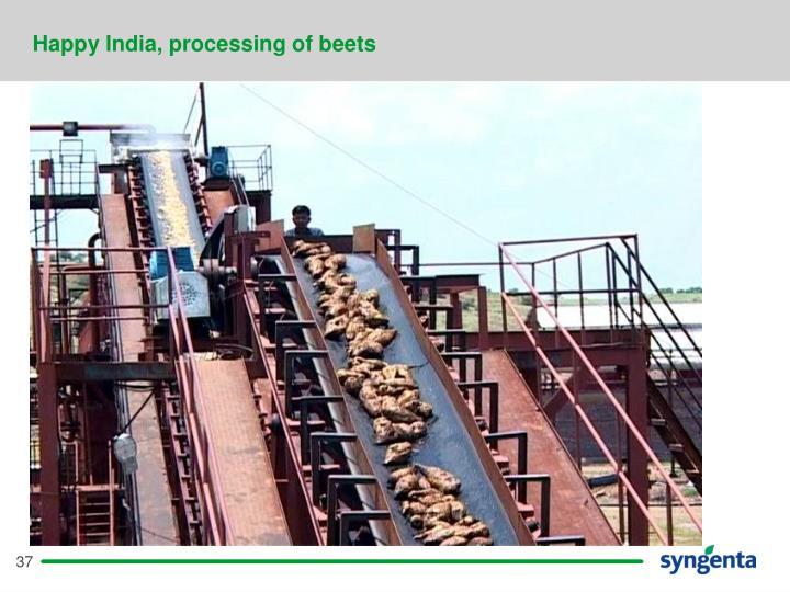 Happy India, processing of beets