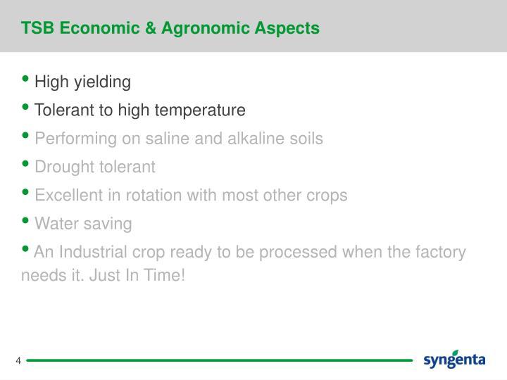 TSB Economic & Agronomic Aspects