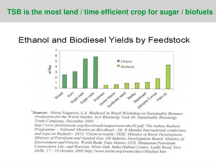 TSB is the most land / time efficient crop for sugar / biofuels