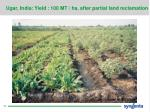 ugar india yield 100 mt ha after partial land reclamation