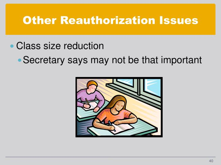 Other Reauthorization Issues
