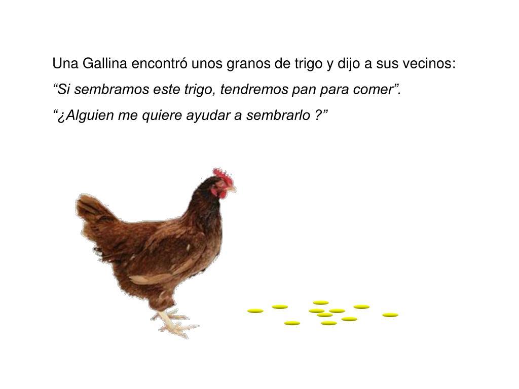 Una Gallina encontró unos granos de trigo y dijo a sus vecinos: