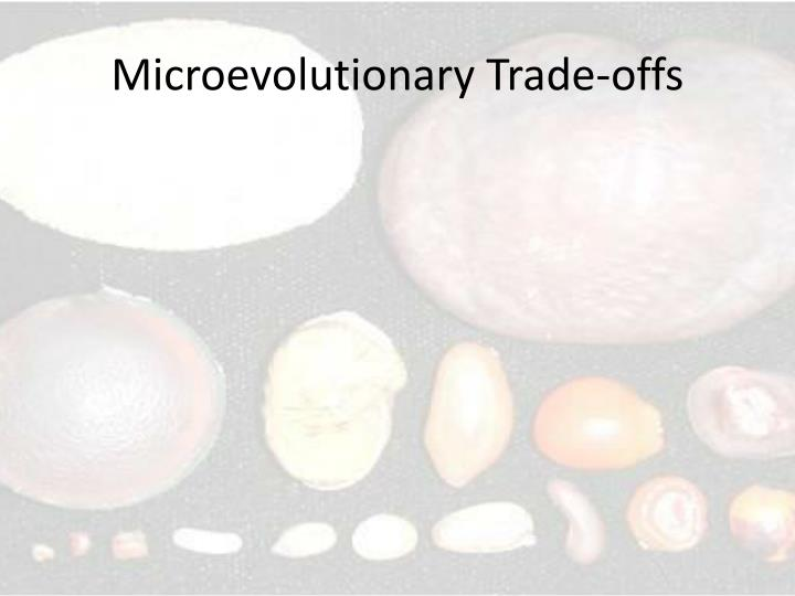 Microevolutionary