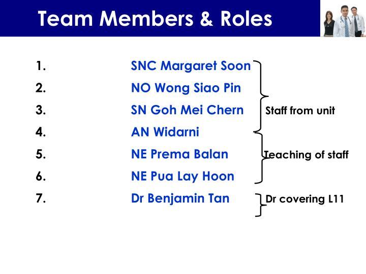 Team Members & Roles