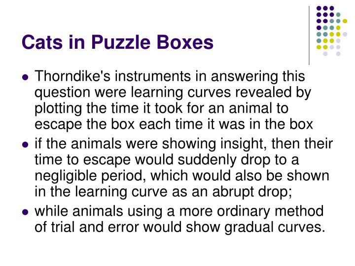 Cats in Puzzle Boxes